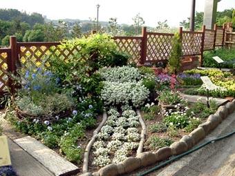花の文化園夢の庭づくり15KB
