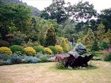 ガーデン植花夢