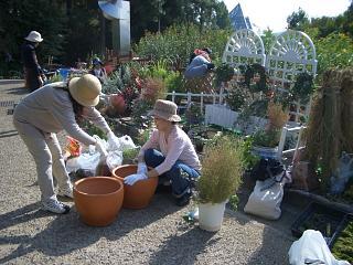 夢の庭2006秋