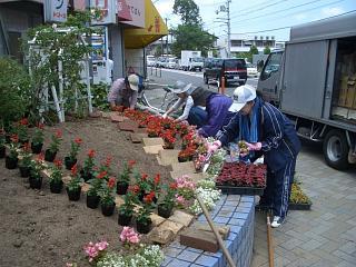 花格子の会交差点花壇