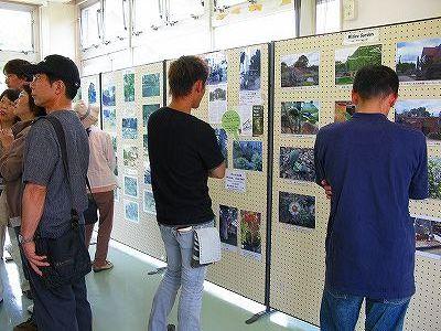 チェルシーフィジックガーデンの写真展示のあたり2008年7月6日撮影