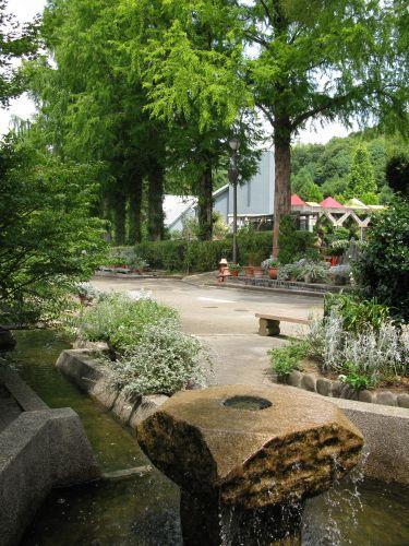 花の文化園の回廊風景2008-08-09