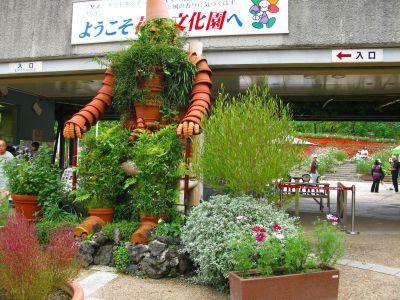 花の文化園の風景2008年10月12日