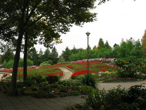 大花壇2008年10月12日