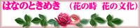 花のときめき